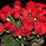 父の日の由来は?バラを贈る理由と色の意味