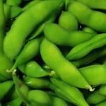 枝豆を使った離乳食はいつから?ゆで時間やおすすめレシピ!