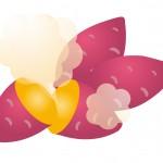 焼き芋の1本のカロリーや糖質は?安納芋や紅はるかでも違うの?