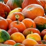 日本産、西洋産のかぼちゃの種類と名前!おすすめの食べ方は?
