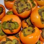 柿の種類!名前や特徴!干し柿や渋柿、大きいものは?
