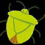 カメムシの種類と天敵!鳥やクモ、カマキリに弱いのはウソ!?