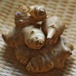 菊芋の効果や効能は美容やダイエットにいい成分が豊富!!