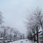 初冬の候の意味や由来!季語の時期はいつからいつまで?