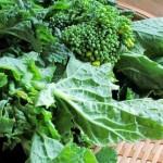 菜の花の栄養や効能!旬な時期やカロリー、保存期間は?
