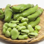 そら豆の栄養やカロリー!妊婦に必要な効能やダイエット効果も!?