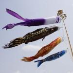 鯉のぼりを飾る時期やしまう時期はいつ?何歳まで飾るもの??