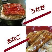 穴子丼と鰻丼の画像