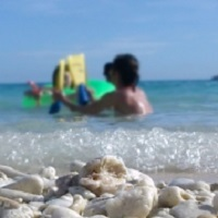 海水療法の画像