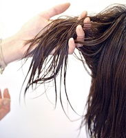 くせ毛の画像