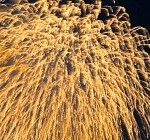 打ち上げ花火の画像