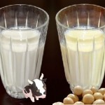 牛乳と豆乳の違い!糖質やカロリーが高いのはどっち?代用になるの?