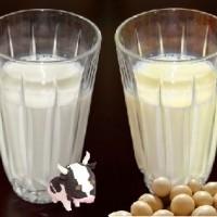 牛乳&豆乳の画像