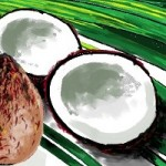 ココナッツオイルでうがいのやり方!効果的なタイミングはいつ?