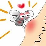 蚊に噛まれてかゆみが続く原因はなぜ?かゆみを止める2つの方法!