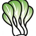チンゲン菜の栄養は調理方法で効能は変わるの?保存方法は?