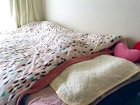 羽毛布団の画像