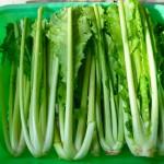 野沢菜の栄養や効能は生と漬物で変わる!?旬な時期はいつごろ?