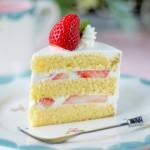 ケーキのスポンジの作り方!膨らまない原因や炊飯器で簡単にする方法