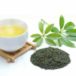 自宅でできる!よもぎ茶の作り方!効果的なおすすめの飲み方とは?