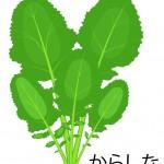 からし菜に含まれる栄養!豊富な栄養価には驚きの効能や効果が