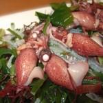 ホタルイカの栄養と干物の作り方や食べ方!踊り食いは危険!?