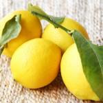 プランターでのレモンの育て方!育てやすい品種や実がならない原因は?