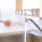 台所にわくウジや虫の種類!おすすめの3つの駆除方法