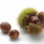 栗が変色する原因と防止方法!栗ご飯や甘露煮のポイントは?