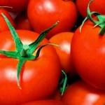 トマトの食べ過ぎで起こる4つの症状!どのくらいの量で食べ過ぎ?
